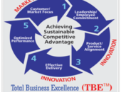 Our Methodology and Approach: BizXL