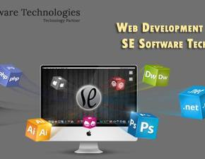 Web Development/Web Design/Branding/Marketing