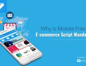 Why is Mobile Friendly E-commerce Script Mandatory