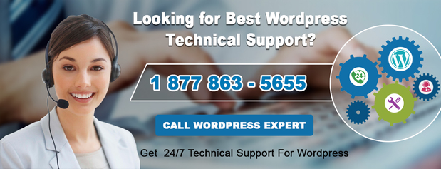WordPress Support Number +1-877-863-5655