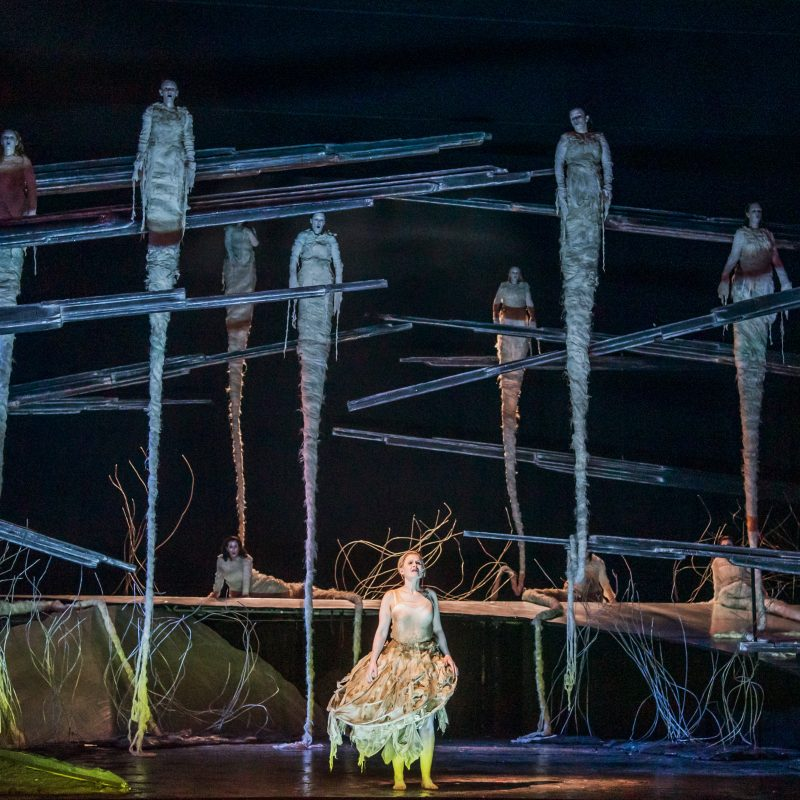 What you thought of: Rusalka