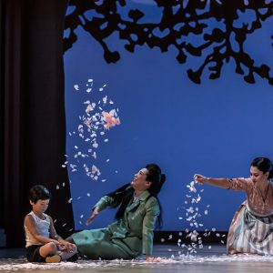 Support Madama Butterfly