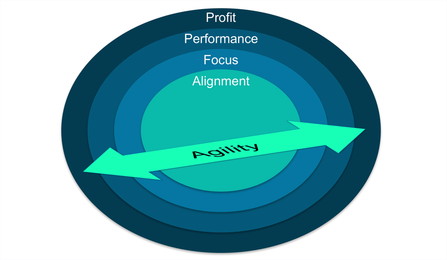 Four steps connecting agility to profit