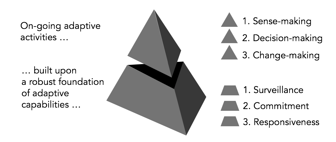 Goal Atlas - Pyramid Model of Strategy Adaptation