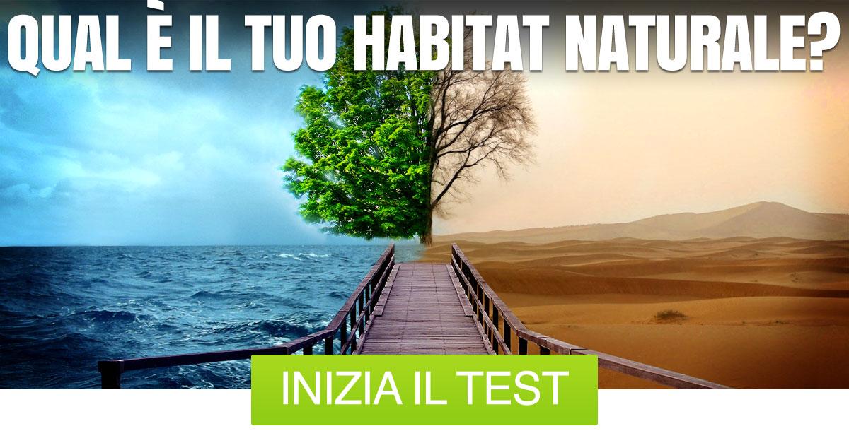 Qual è il tuo habitat naturale? | GoQuiz