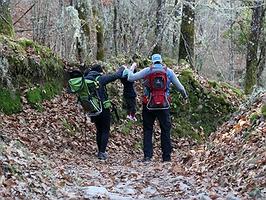 Protagonistas de su propio cuento en bosques encantados
