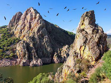 Escapada al Parque Nacional de Monfragüe