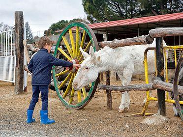 Burrolandia con niños (Tres Cantos, Madrid)