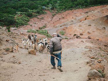 Parque rural de Teno (Tenerife): las mejores rutas