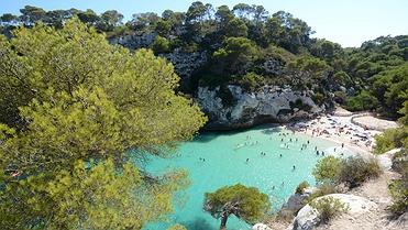 Queso de Maó de Menorca
