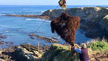 Recolectando el alga roja del mar cantábrico