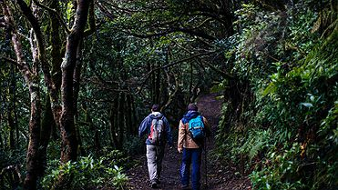 Ruta por los senderos de Anaga (Tenerife)