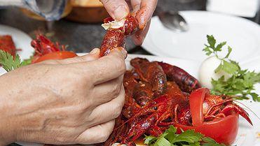 El cangrejo en Herrera de Pisuerga (Palencia): Fiesta de Exaltación