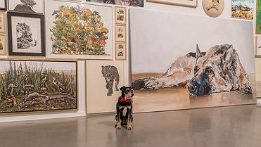 Al museo con mi perro