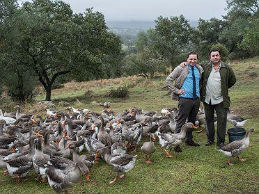Foie gras Sousa & Labourdette