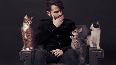 Lo que los gatos unieron, que no lo separe el hombre