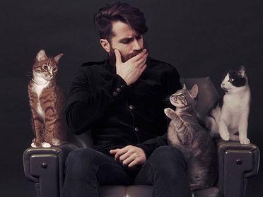 Catfriendly: Suara Store en Barcelona