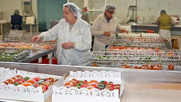 Frutas confitadas, glaseadas y escarchadas 'Francisco Moreno' (Calahorra, La Rioja)
