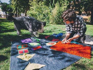 Juguetes interactivos para viajar con tu perro