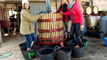 La Rioja y su vino supurao