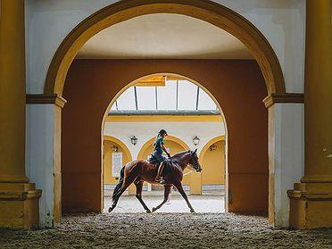 La Yeguada y la Real Escuela de Arte Ecuestre de Jerez