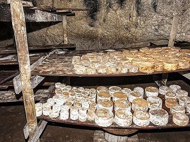 Quesos de Cantabria: Picón Bejes-Tresviso