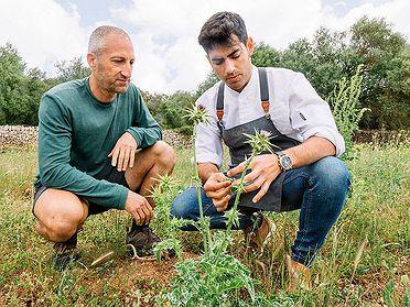 Mallorca: acompañamos a los cocineros de la isla a hacer la compra
