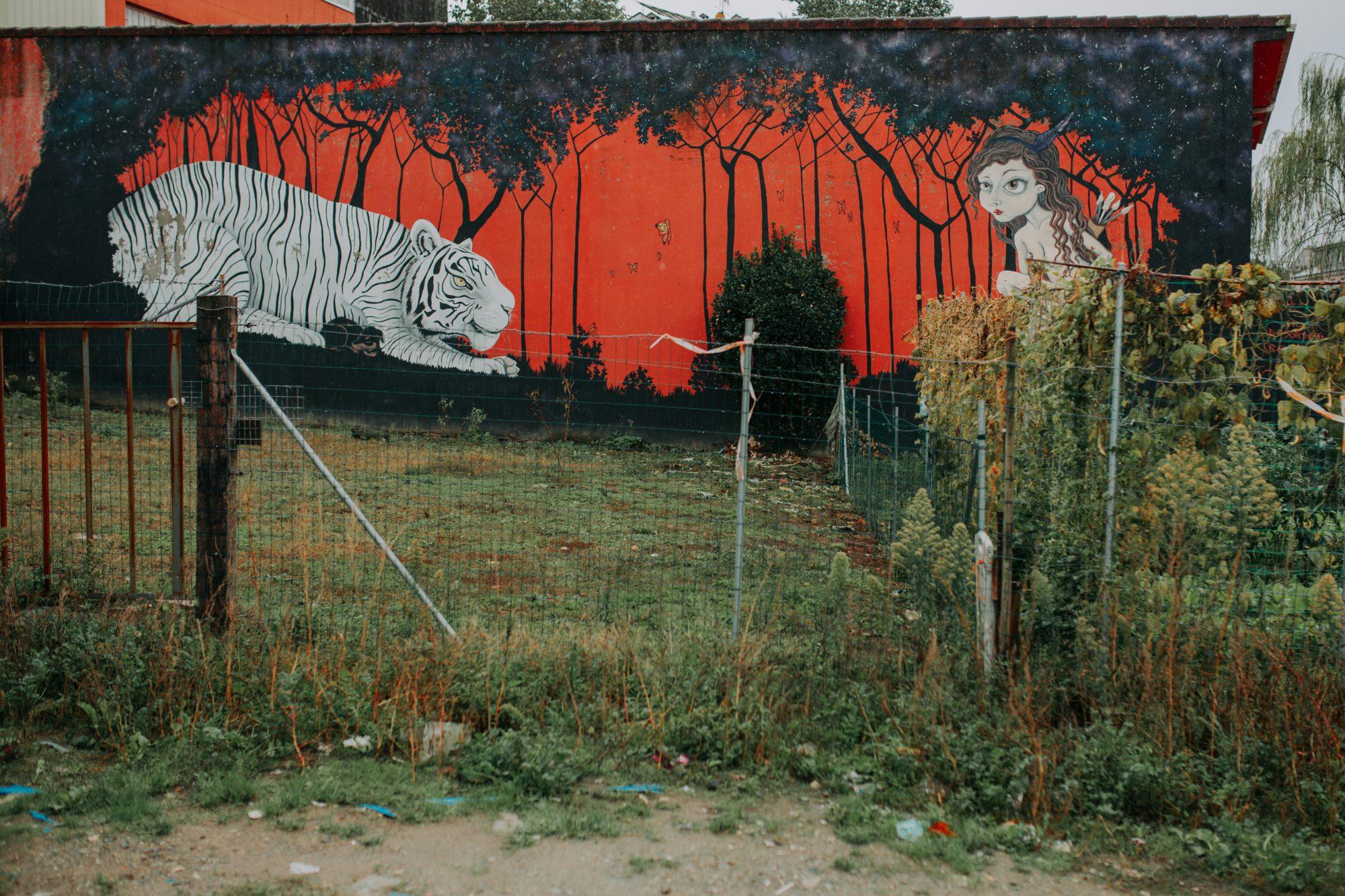 Street art en Ordes: obra 'Cosmos' de Diana Rodeiro