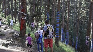 Visita al Bosque de Oma (Vizcaya): ¿Qué ver y hacer?