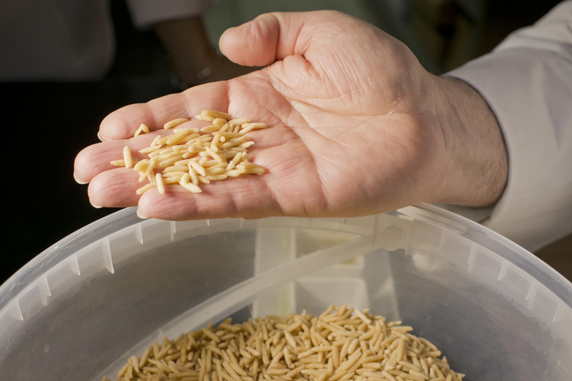 Los gurullos, pasta tradicional de Almería que se moldea a mano.
