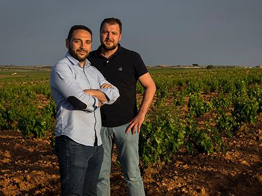 Garage Wine, Vinos artesanos de La Mancha Toledana