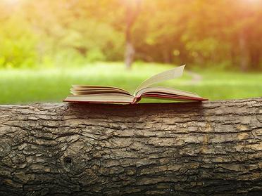 Cocineros y libros que les hacen viajar