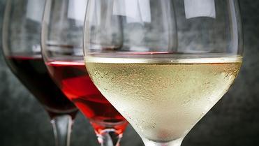Cómo ser un experto en vinos