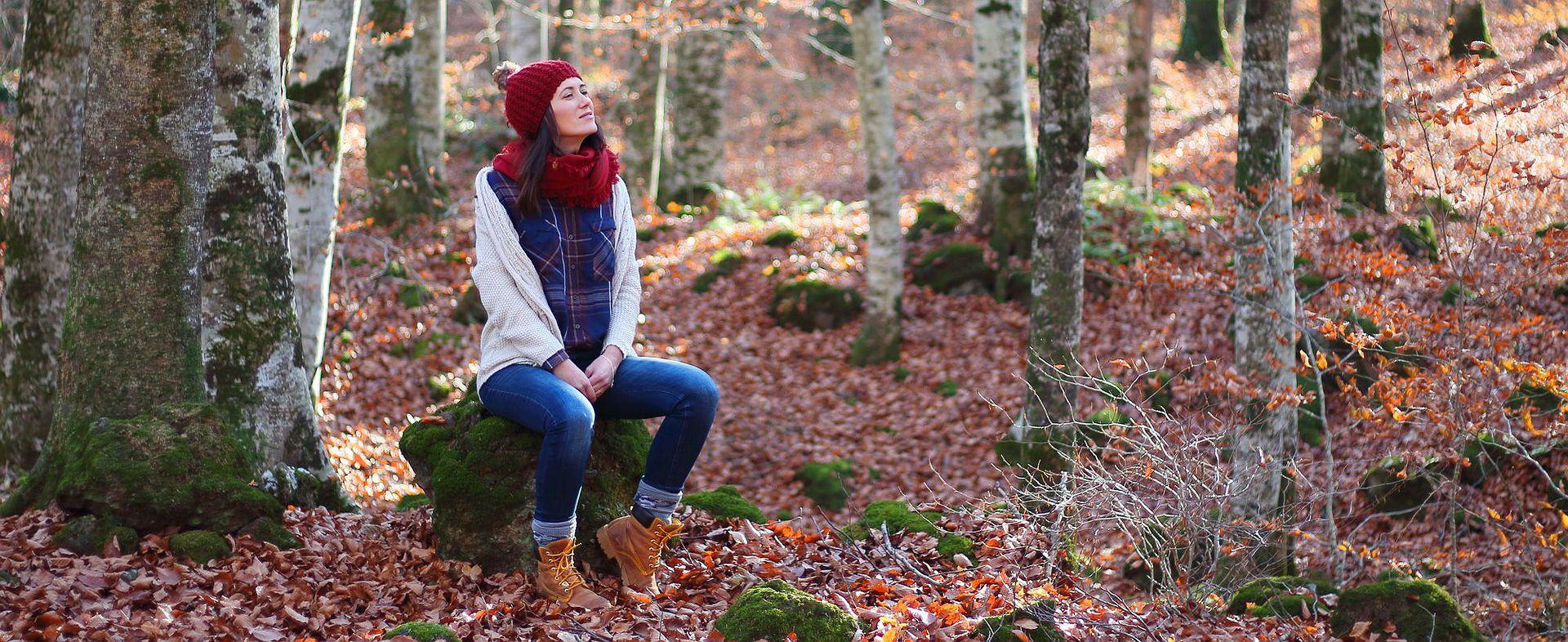 Tres hayedos catalanes para celebrar el otoño