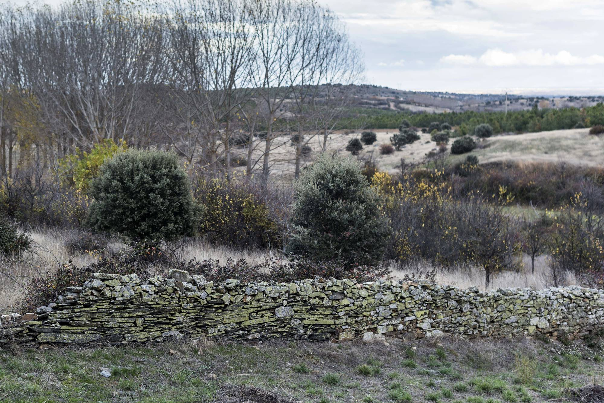 Una tierra árida para la siembra y el pasto que aguzó el ingenio para sobrevivir.