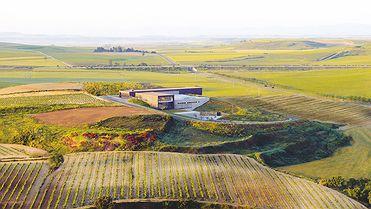 Rioja para amantes del vino