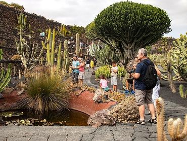 Paseo por el Jardín de Cactus de la isla de Lanzarote (Las Palmas)