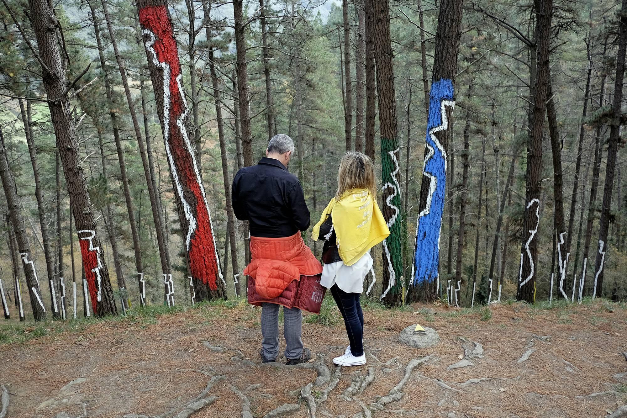 Parejas y grupos de amigos también recorren el bosque durante todo el año.