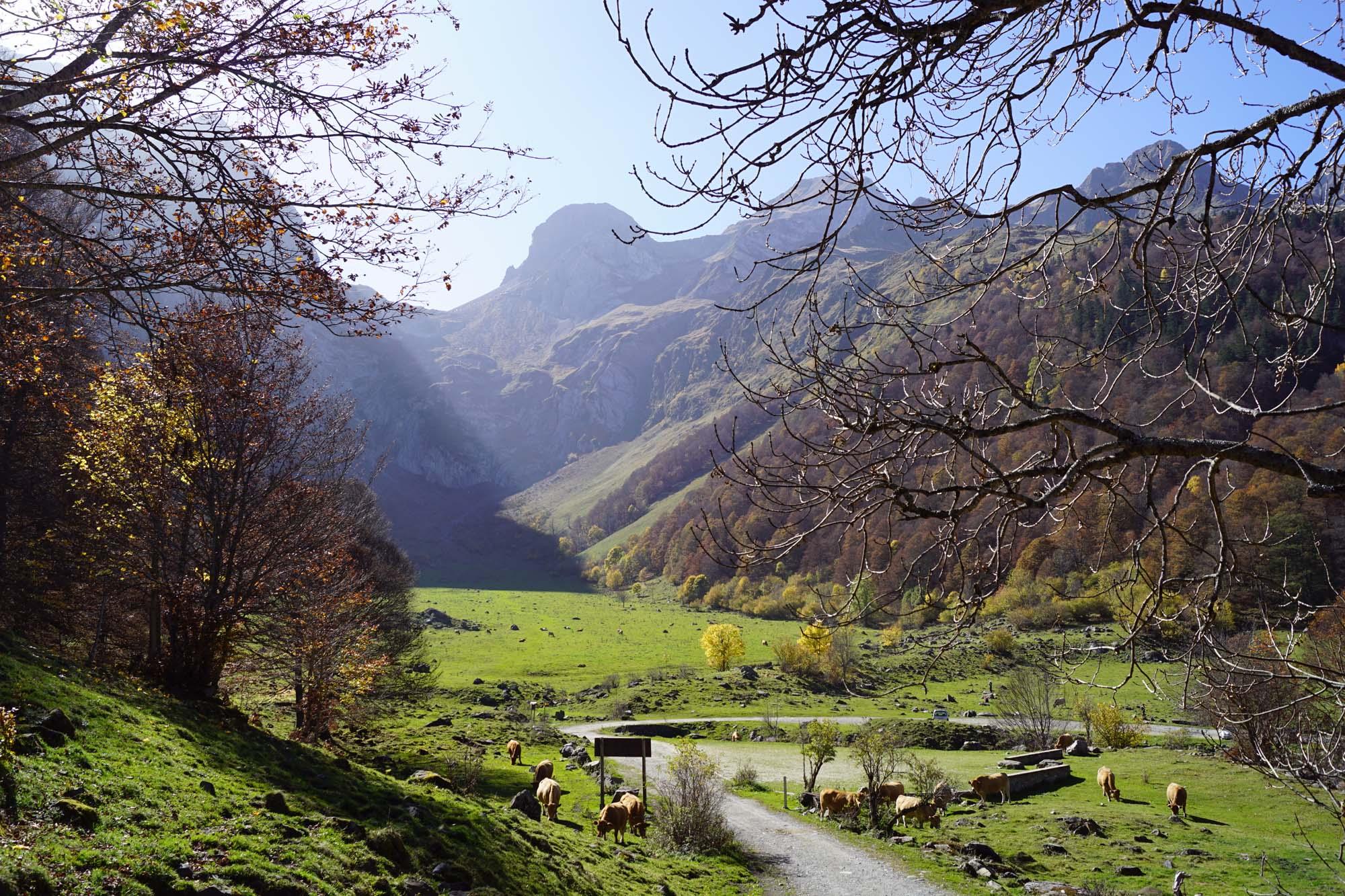 Un idílico entorno en pleno Valle de Arán. Foto: Shutterstock.