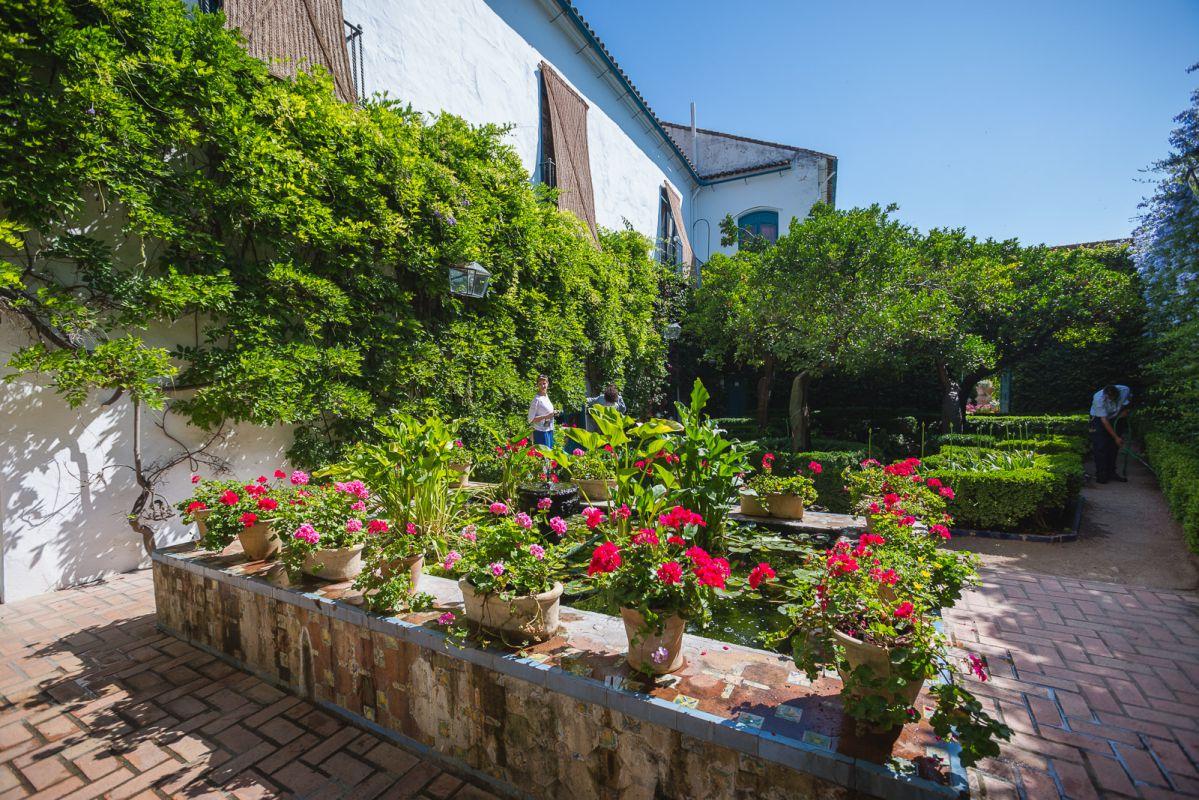 El Patio de los Naranjos conserva la esencia de la reminiscencia árabe del patio-huerto.