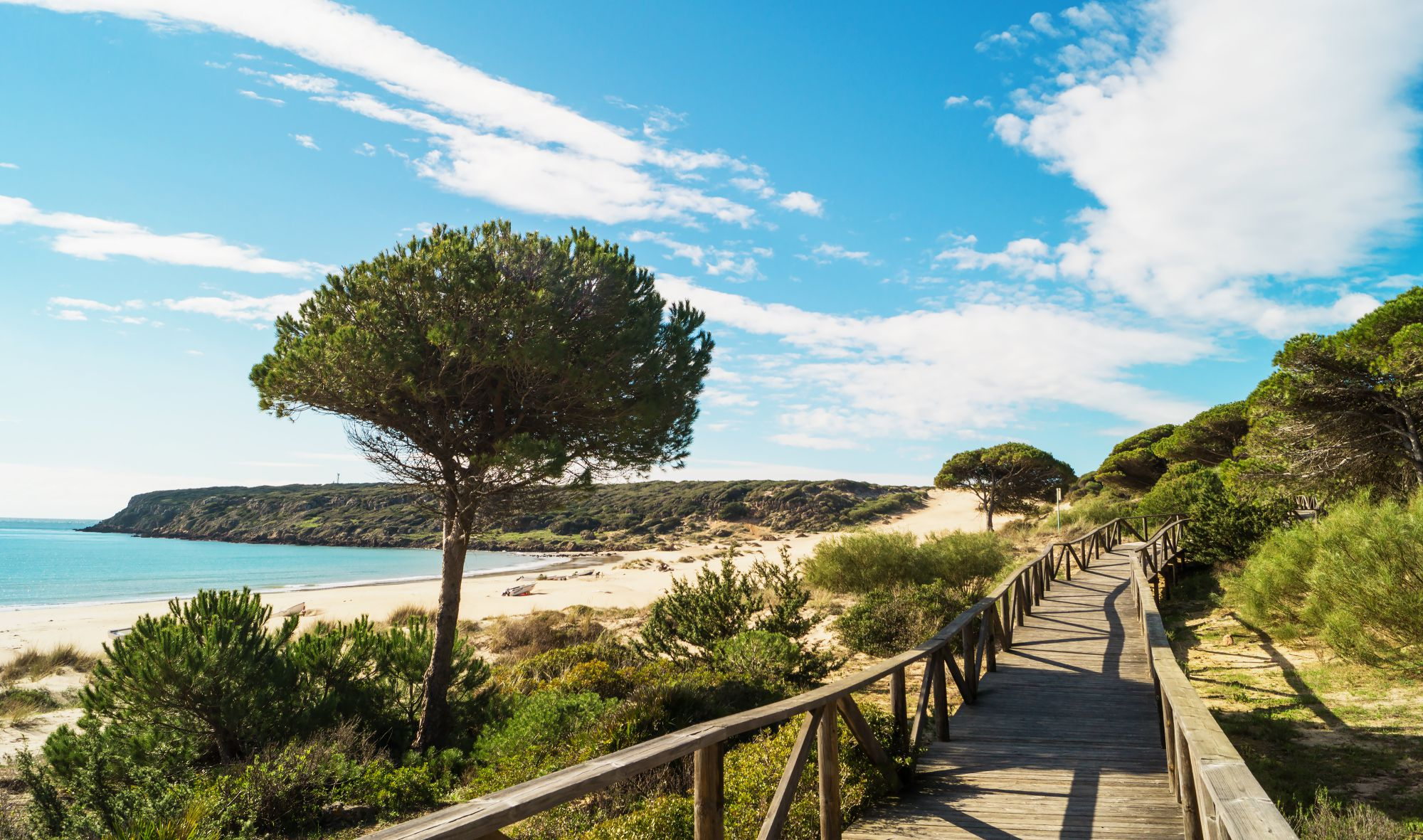 Playas De Cádiz Diez Para Flipar En Verano Guía Repsol