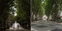 Mallorca vacía: Paseo del Borne