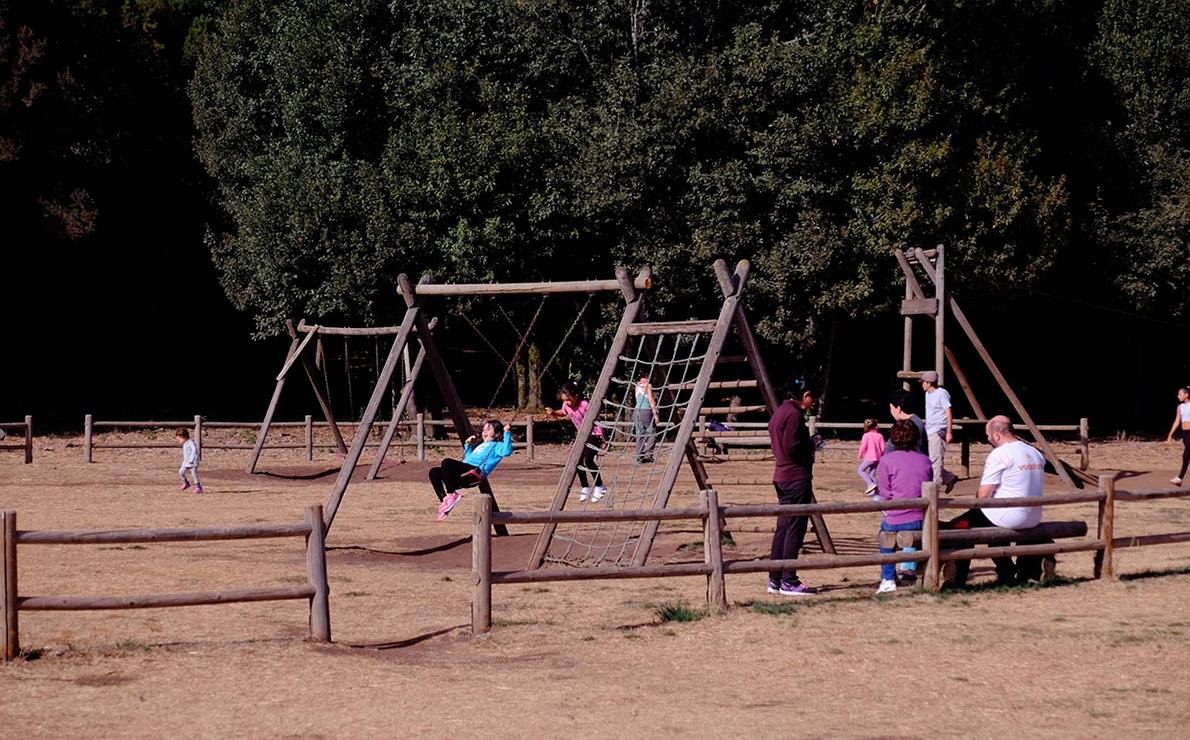 Parque de Garajonay. La Gomera