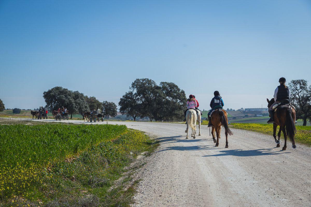 Un plan familiar: ruta por La Carlota. Foto: Javier Sierra
