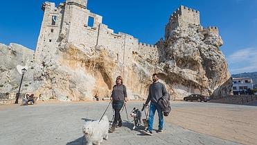 Escapada con tu perro a Zuheros (Córdoba)