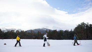 Raquetas en la nieve en Rascafría (Sierra de Guadarrama, Madrid)
