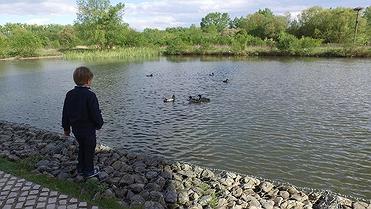 Excursión con niños al Parque de Salburua (Vitoria)