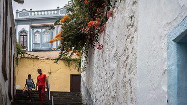 Ruta por Santa Cruz de La Palma (Santa Cruz de Tenerife)