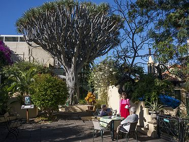 Puerto de la Cruz (Tenerife): así vive la colonia británica