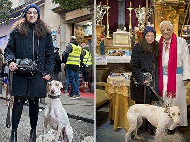 San Antón: la fiesta de los animales